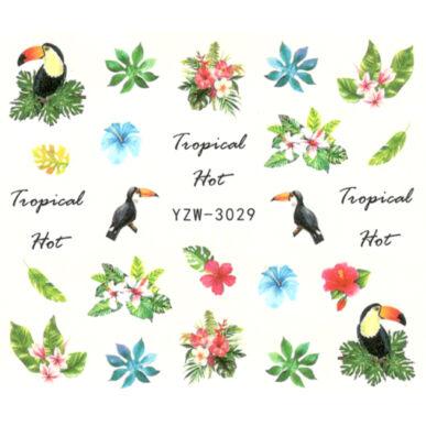 Vizes körömmatrica YZW-3029 nyári, trópusi madár